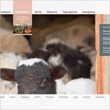 Webseite Stiftung